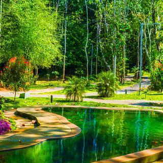 정글 속 리조트, 'Wareerak Hot Spring Retreat'에서 온천욕 즐기기