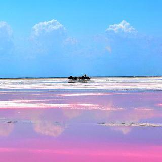 딸기 우유 빛깔의 호수, 'Las Coloradas Pink Lake'에서 인생샷 찍기