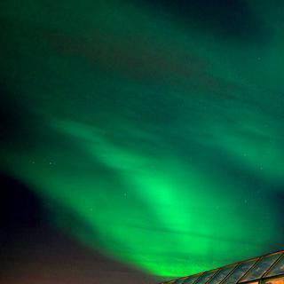 북극 생태의 축소판, 'Arktikum' 박물관 관람하기