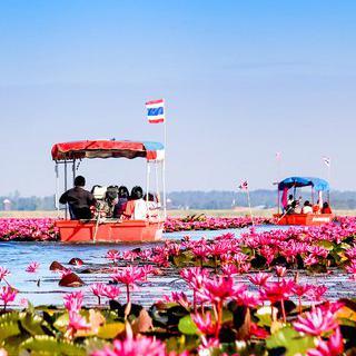 빛으로 물든 풍경, '붉은 연꽃 호수'에서 보트 타기