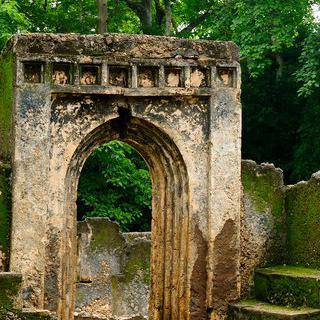 스와힐리 마을의 흔적, 'Ruins of Gedi'에서 유적 감상하기