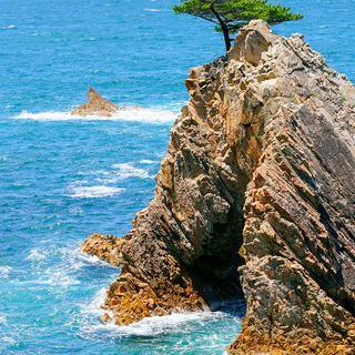 여유롭게 즐기는 일본 100경, '우라도메 해안'에서 유람선 타기