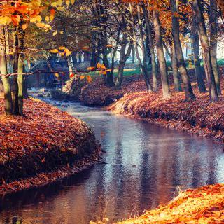 단풍으로 물든 운하, '툴루즈'에서 산책하기