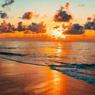 백패커들의 천국, 'Lonely Beach'에서 선셋 감상하기
