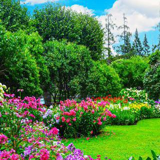 시베리아의 향긋한 식물원에서 꽃구경하기