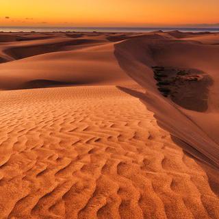 드넓은 해안 사구, 'Natural Dune Reserve of Maspalomas'에서 풍경 감상하기