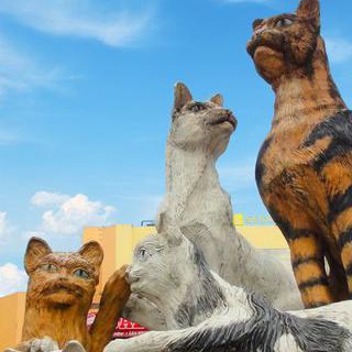 쿠칭 한복판에서 고양이 가족 동상 만나기