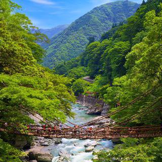 덩굴로 만든 구름다리, 'Iya-no-Kazura Bashi' 건너기