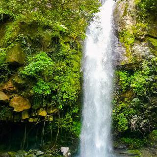 코스타리카의 국립 공원에서 폭포 감상하기
