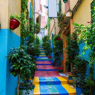 탕헤르의 올드 타운, 'District Urbain de Tanger-Medina' 탐방하기