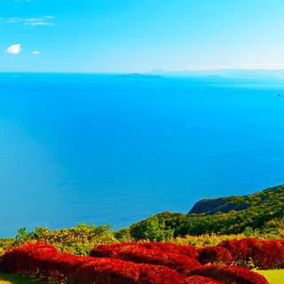 고지대에 펼쳐진 초원, '센죠지키'에서 바다 풍경 감상하기