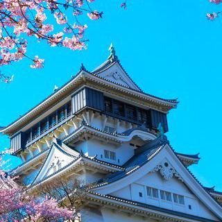 미야모토 무사시의 도장, '코쿠라성'에서 벚꽃 감상하기