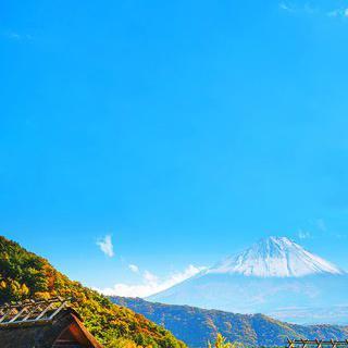 전통 초가집 테마파크, '이야시노사토 고대 일본 마을' 탐방하기