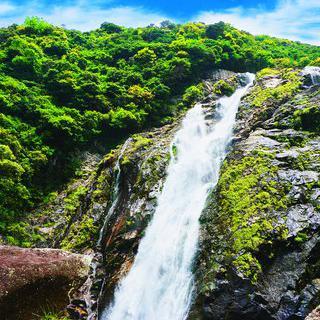 야쿠시마섬의 비경, '오코 폭포'에서 사진 찍기