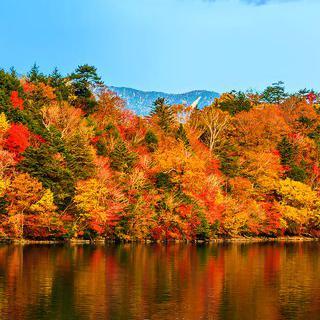 자연과 문화의 종합 선물 세트, '닛코 국립 공원' 방문하기
