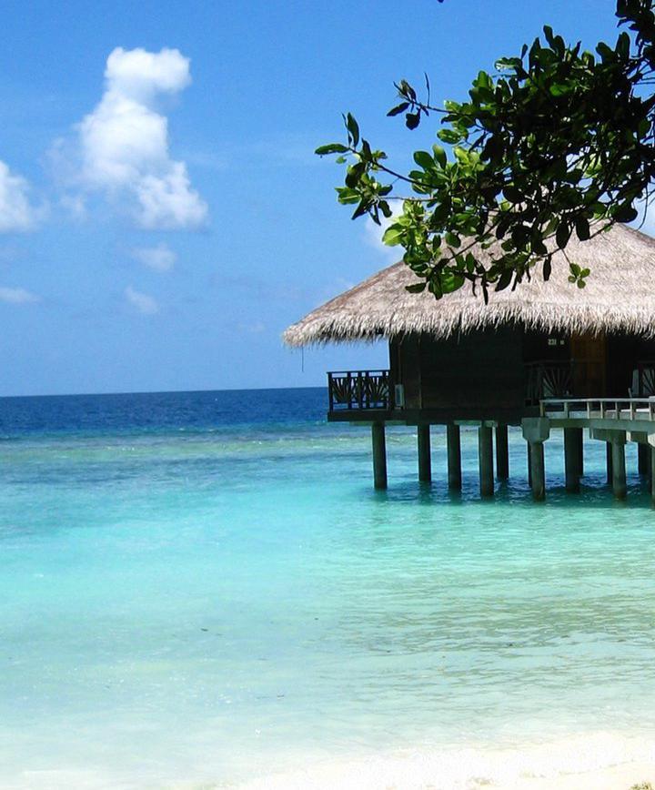 말레, 몰디브 프로필 이미지