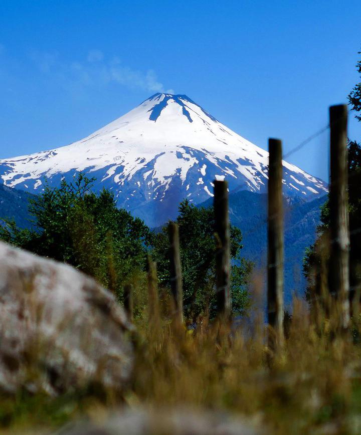 푸콘, 칠레 프로필 이미지