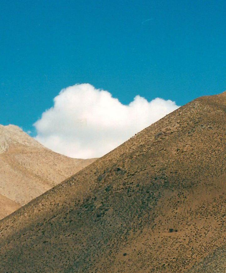 라세레나, 칠레 프로필 이미지