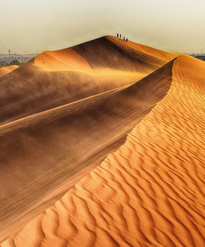 알 아인, 아랍에미리트 프로필 이미지