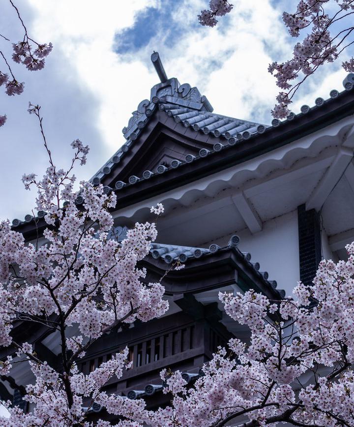 가나자와, 일본 프로필 이미지