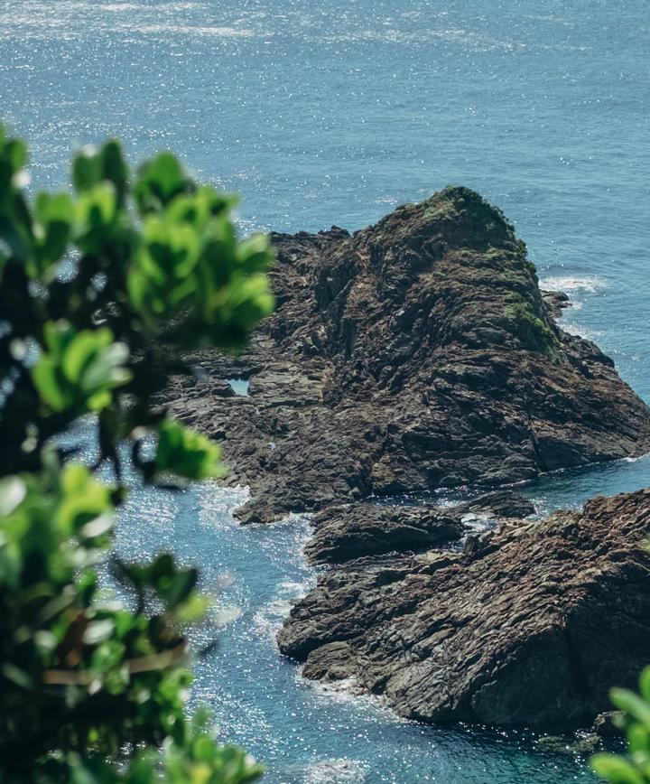가고시마, 일본 프로필 이미지