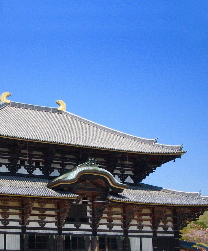 나라, 일본 프로필 이미지