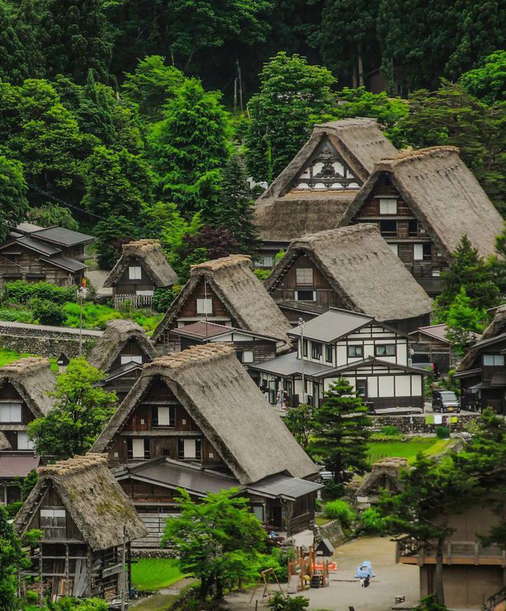 기후, 일본 프로필 이미지