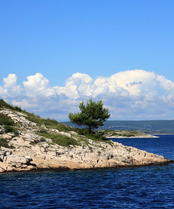 비오그라드나모루, 크로아티아 프로필 이미지