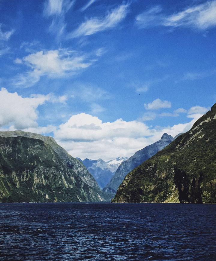 그레이마우스, 뉴질랜드 프로필 이미지