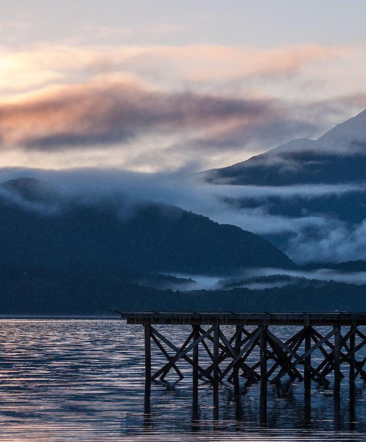 테아나우, 뉴질랜드 프로필 이미지