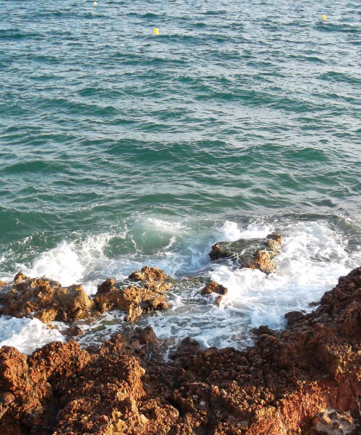 살로우, 스페인 프로필 이미지