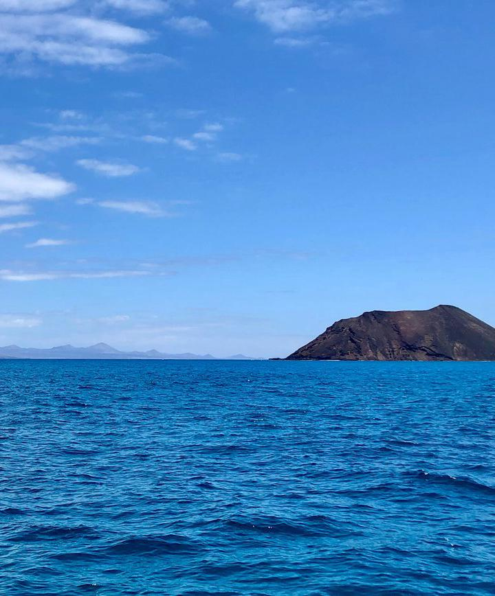 코랄레호, 스페인 프로필 이미지