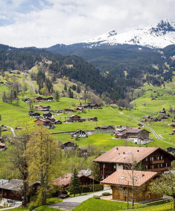 인터라켄, 스위스 프로필 이미지