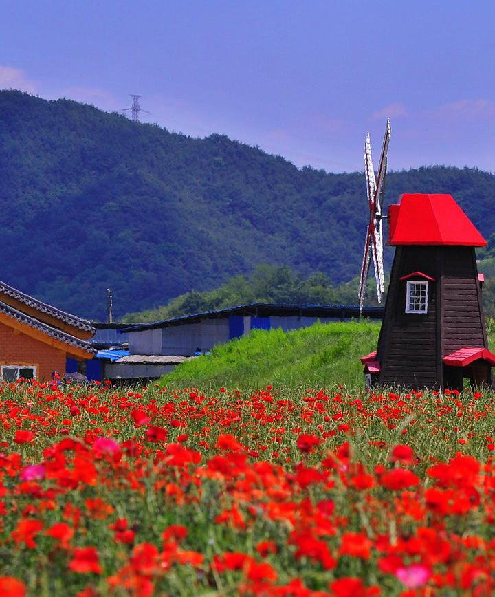하동, 대한민국 프로필 이미지